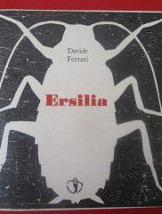 Davide Ferrari, <em>Ersilia</em>, Il ragazzo innocuo, 2016
