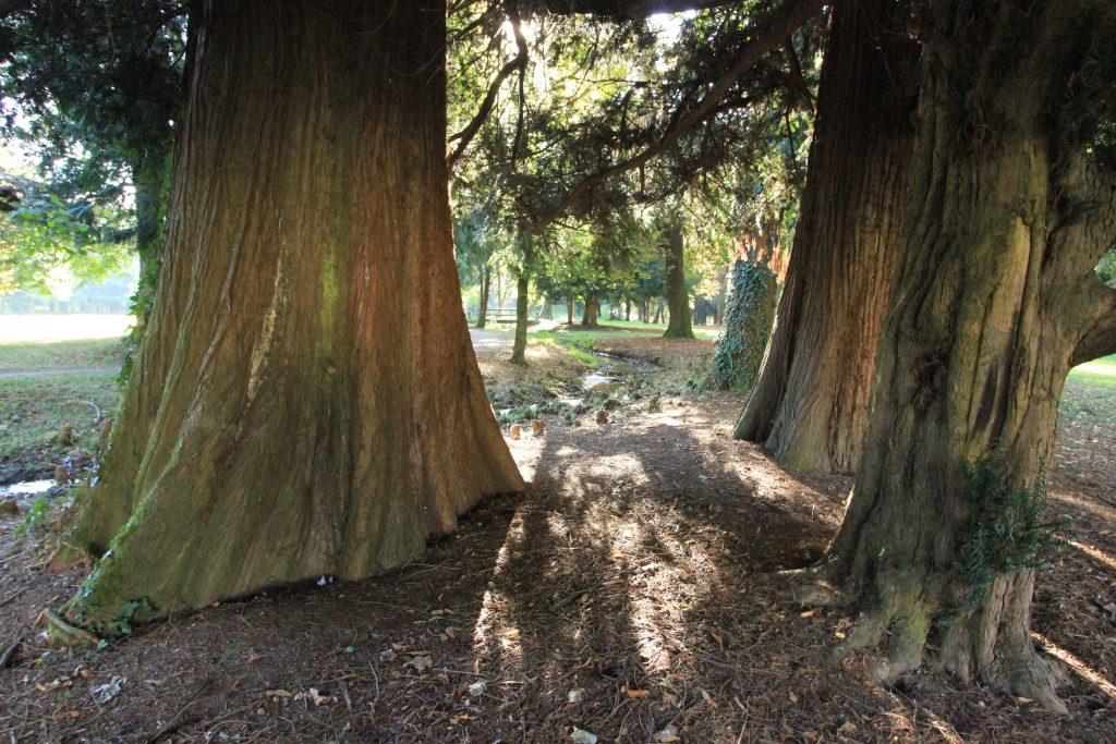 ©Tiziano Fratus - Parco della Villa Reale di Monza