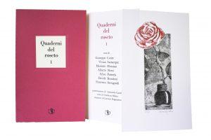 Libro d'arte Quaderni del roseto, Il Ragazzo innocuo, 2017