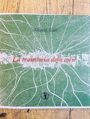Gianni Salis <em>La traiettoria delle corse</em>, Il Ragazzo innocuo, 2018