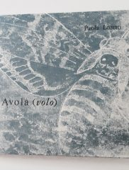 <em>Avola (volo)</em> di Paola Loreto – Il Ragazzo Innocuo, 2018